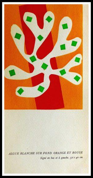 """(alt=""""original stencil Henri MATISSE - Algue blanche sur fond orange et rouge, 1953, printed by Mourlot, 1000 copies, catalogue Berggruen"""")"""
