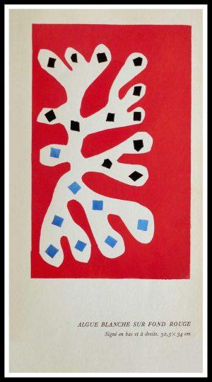 """(alt=""""original stencil Henri MATISSE - Algue blanche sur fond rouge, 1953, printed by Mourlot, 1000 copies, catalogue Berggruen"""")"""